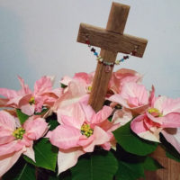 Reclaimed wood cross among pink poinsettias